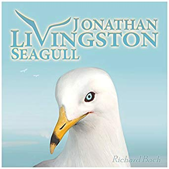 cover for Jonathan Livingston Seagull