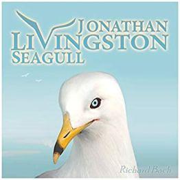 cover for Jonathan Livingston Seagull